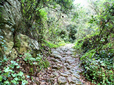 Path to the Barranc d'Algendar